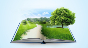 Экологическая документация в 2021: изменения, сроки сдачи отчетности